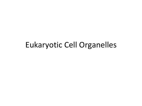 Preview of Eukaryotes