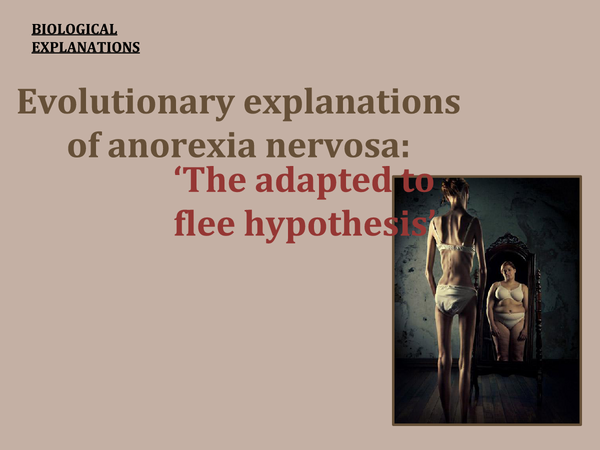 Preview of Evolutionary explanations of anorexia nervosa (adapted to flee hyp.) Powerpoint