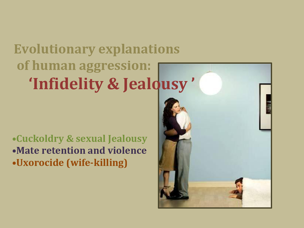 Preview of Evolutionary Explanations of Human Aggression - Indfidelity and Jealousy