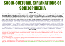 Preview of EXPLANATIONS OF SCHIZOPHRENIC