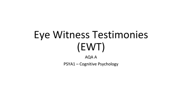 Preview of Eye Witness Testimonies