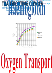 Preview of F211 oxygen transportation