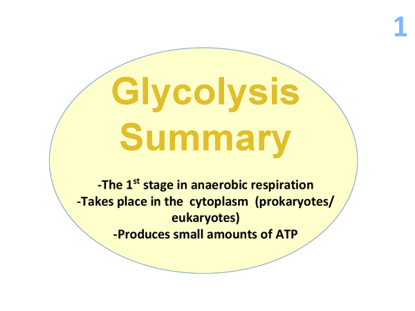 Preview of F214 Glycolysis made simple powerpoint