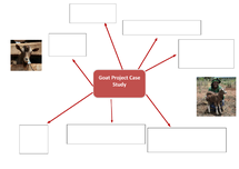 Preview of FARM-Africa Goat Project Case Study mindmap