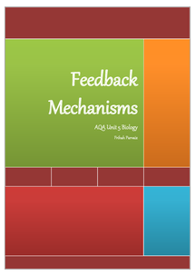 Preview of Feedback Mechanisms