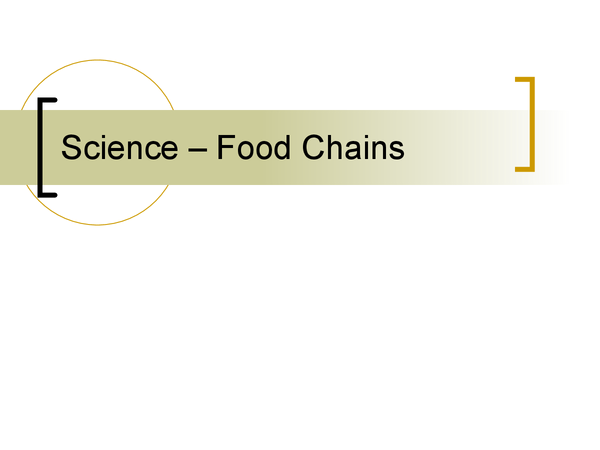 Preview of Food Chains And Webs