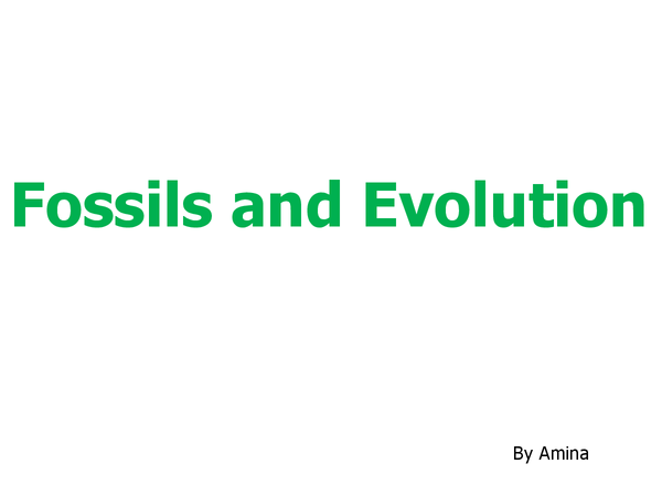 Preview of Fossils and Evolution