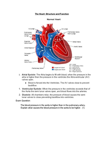 Preview of Functions of the Heart