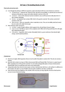 Preview of GCSE Biology Edexcel B2 Topic 1