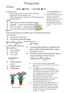 Preview of GCSE Biology - Photosynthesis