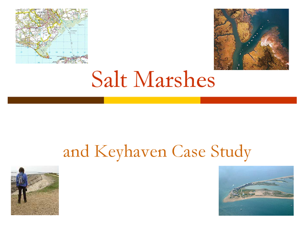 Preview of GCSE Geography - Coasts - Salt Marshes and Keyhaven Case Study PowerPoint