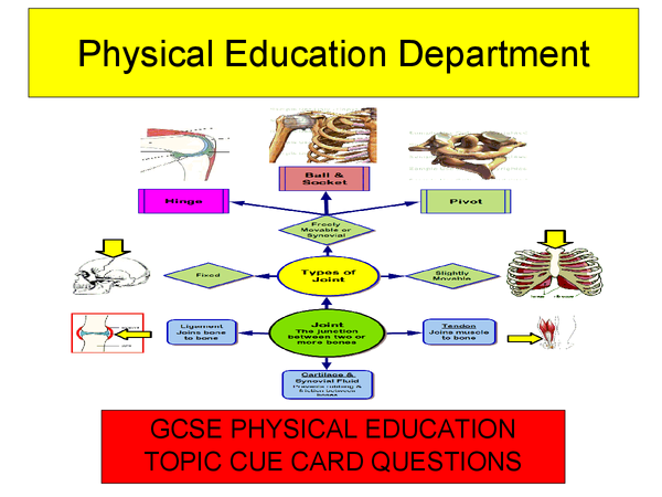 physical education sba for gcse Results 1 - 10 of 42  subject pe for success at csec subject science for success at csec  subject business and economics for success at csec subject.