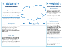 Preview of Gender: Dysphoria AO1