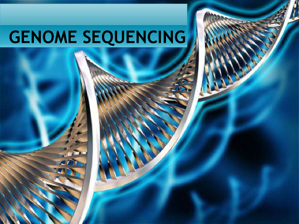 Preview of Genome Sequencing (Based on A2 OCR BOOK)