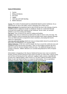 Preview of Geography-Rainforests-Causes of Deforestation