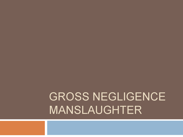 Preview of Gross Negligence Manslaughter