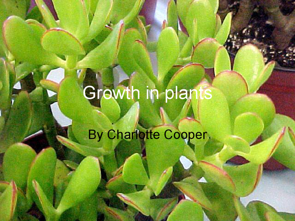 Preview of Growth in plants