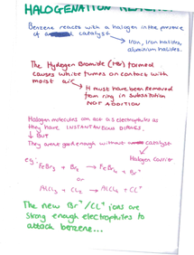 Preview of Halogenation page 1 of 2