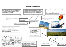 Preview of Halosere Succession on eco-systems.