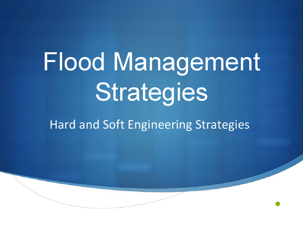 Preview of Hard and Soft Engineering Management Advantages and Disadvantages
