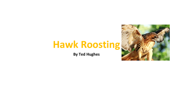 Preview of Hawk Roosting Analysis