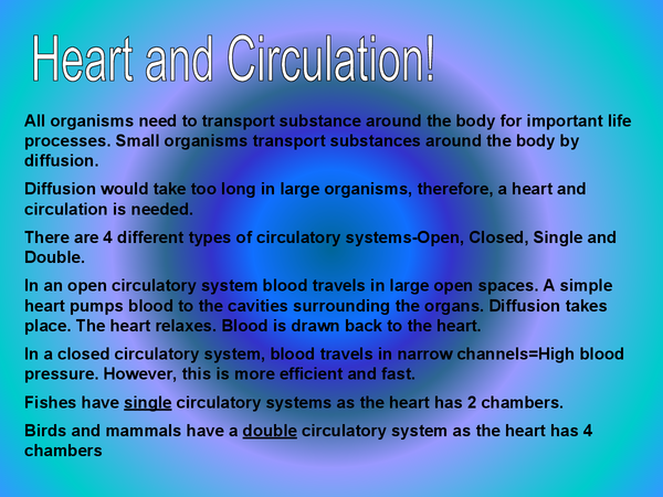Preview of HEART AND CIRCULATION
