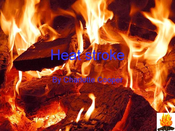 Preview of Heatstroke