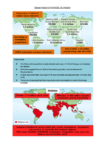 Preview of HIV, AIDS, TB and Malaria Global Impact