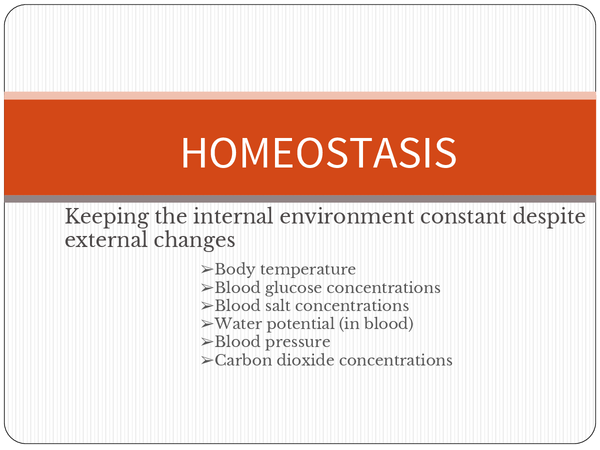 Preview of Homeostasis