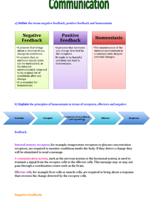 Preview of Homeostasis and Negative Feedback