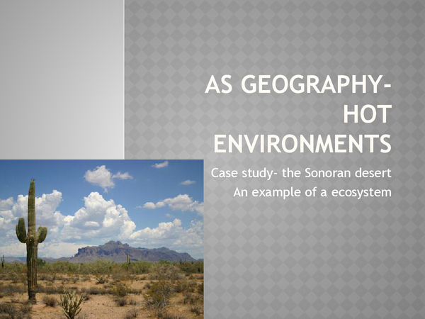 Preview of hot enviroments case study, the sonoran desert