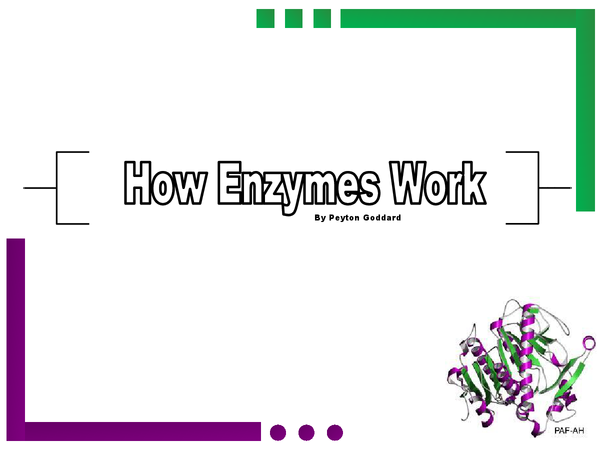 Preview of How Enzymes Work OCR Biology F212