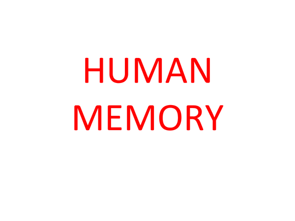 Preview of Human Memory
