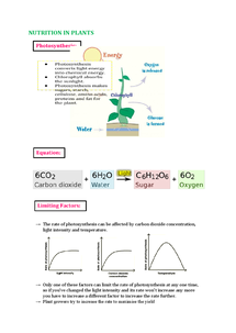 Preview of IGCSE Biology Double Award Nutrition in Plants Notes
