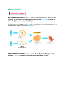 Preview of IGCSE Biology Double Award Reproduction Notes