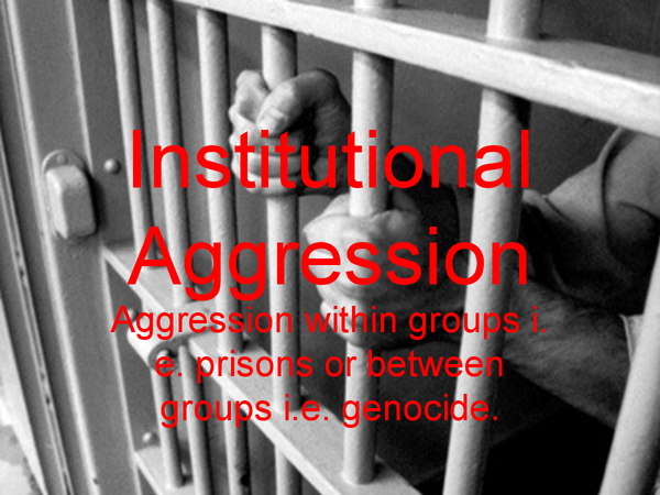 Preview of Institutional Agression