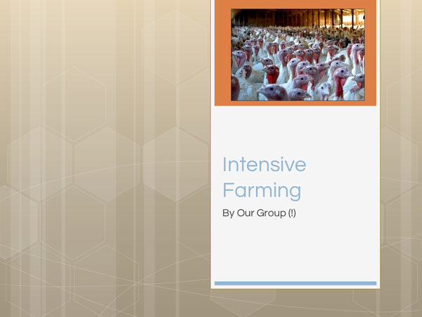 Preview of Intensive Farming Animal Rights