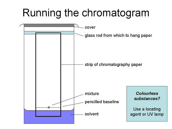 Preview of Interpreting Chromatograms