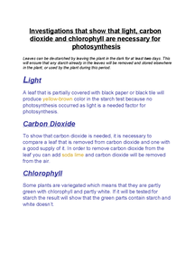 Preview of Investigations that factors are needed for photosynthesis
