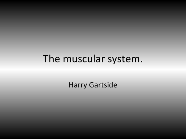 Preview of Jack hunt- muscular system