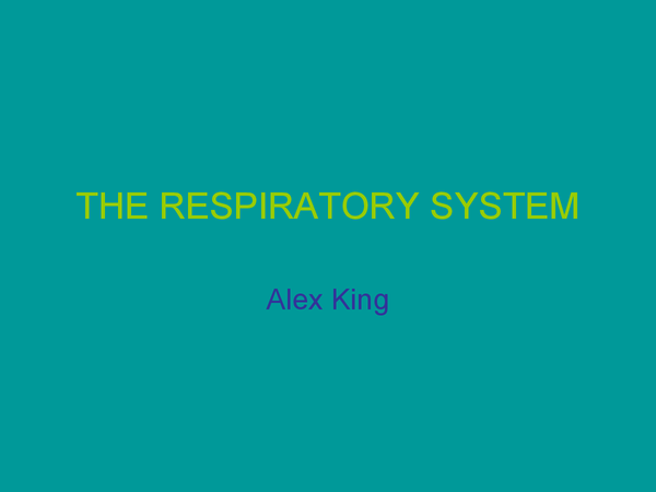 Preview of Jack Hunt respiratory system!!!!!!!!!!!!!!!!!!!!!!!!!!!!