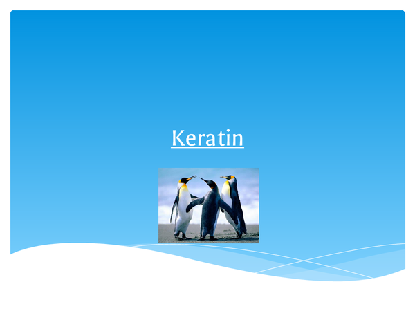 Preview of Keratin Powerpoint