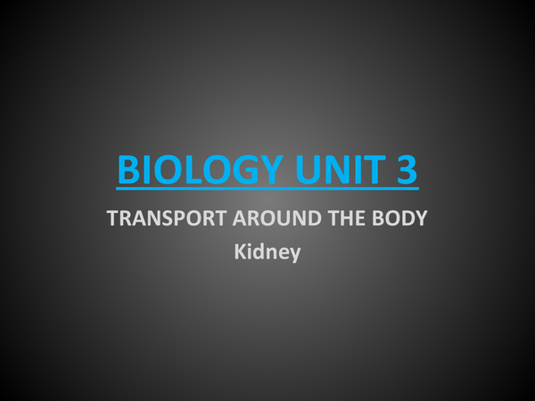 Preview of Kidney