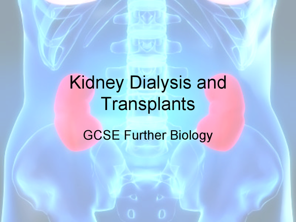 Preview of Kidney Dialysis and Transplants Powerpoint, Further GCSE Biology