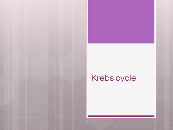 Preview of Krebs cycle