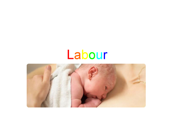 Preview of Labour