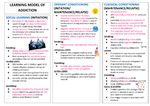 Preview of Learning Model of Addiction