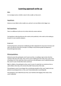 Preview of Lerning approach practical write up