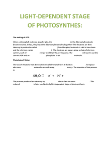 Preview of Light - Dependant Stage of Photosynthesis