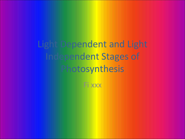 Preview of Light Dependent and Light Independent Stages of Photosynthesis
